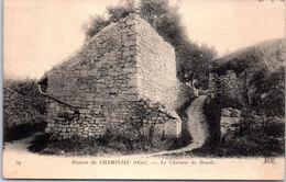60 CHAMPLIEU - Le Chemin De Ronde - France