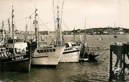 56* LA TRINITE SUR MER Port  (CPSM Petit Format)           MA87,0287 - La Trinite Sur Mer