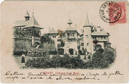 Dinant Château De La Haut 1900 - Dinant