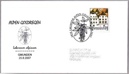 ALPEN GOLDREGEN - CODESO DE LOS ALPES - Laburnum Alpinum. Gmunden 2007 - Vegetales