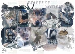 Nederland - 2019 - Beleef De Natuur - Zoogdieren - Echt Gebruikt - Gebruikt