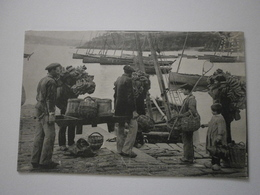 29 Armement D'un Bateau Pour La Pêche à La Sardine (A2p69) - France