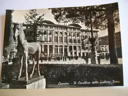 1952 - Carrara -  Il Cavallino Dello Scultore Dazzi - Teatro Politeama G. Verdi - Animata - Vera Fotografia - Carrara