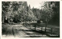 007520  Sommerfrische Gutenstein - Steinapiesting  1942 - Gutenstein