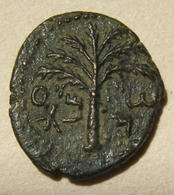 Judea Bar Kokhba Revolt Ancient Bronze Coin Attributed To Year 3, 134-5 CE - 1. Les Julio-Claudiens (-27 à 69)
