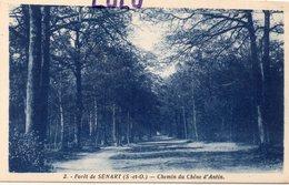 DEPT 91 : édit. Photo Edition Paris N° 2 : Foret De Sénart Chemin Du Chêne D Antin - Sénart