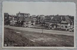 De Haan / Coq S/Mer - N° 101 - Panorama - NELS - Circulé - 2 Scans. - De Haan