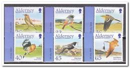 Alderney 2004, Postfris MNH, Birds - Alderney