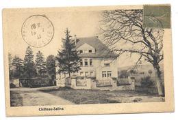 CHATEAU SALINS - Chateau Salins