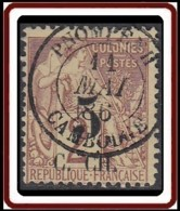 Cochinchine - N° 2 (YT) N° 3 (AM) Oblitéré De Pnompenh / Cambodge. - Cochinchine (1886-1887)