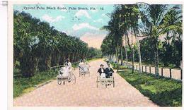 TYPICAL  PALM  BEACH SCENE  PALM  BEACH   FLA    BE US364 - Palm Beach