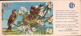 Ancien BUVARD Illustré  C.E.I.M  Nid De Chardonneret - Buvards, Protège-cahiers Illustrés