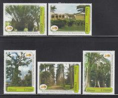 2007 Ghana Botanical Gardens Trees  Complete Set Of 5 MNH - Ghana (1957-...)