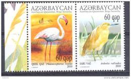 2010. Azerbaijan, Ecology Of Caspian Sea, Birds, 2v, Jont Issue With Kazakhstan, Mint/** - Azerbaïdjan