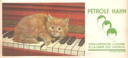 Buvard Pétrole Hann Chaton Sur Un Piano - Parfums & Beauté