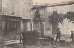 CPA 84 SAULT PLACE DE  LA FONTAINE CHEVAL S'ABREUVANT - France