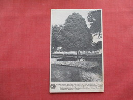 Champion Trees Planted    Griffin Brothers  Fla- Ala.-- Texas >   Ref 3237 - Publicité