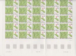 TAAF 1989 Plants 1v Complete Sheetlet With Full Margin** Mnh (TA213) - Ongebruikt
