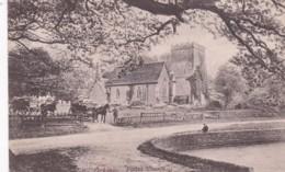 OCKLEY PARISH CHURCH - Surrey