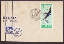 QY16   HUNGARY 1966 - SWALLOW, HIRONDELLE, RONDINE - Hirondelles