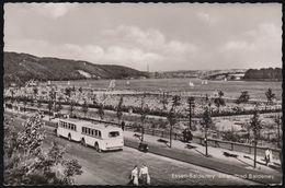 D-45121 Essen - Strandbad Baldeney - Seegaststätte (1955) - Omnibus - Bus Mit Anhänger - Essen