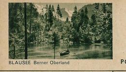 Carte Illustrée Neuve N° 182 - 076 C   BLAUSEE Berner Oberland (barque -pêcheur) (Zumstein 2009) - Entiers Postaux