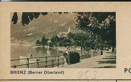 Carte Illustrée Neuve N° 182 - 083 F  BRIENZ (Berner Oberland)  Pêcheur à La Ligne  (Zumstein 2009) - Entiers Postaux
