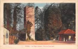 88 - EPINAL - Le Vieux Château - Piles Du Pont Levis - Epinal