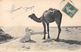 Désert Du SAHARA - La Prière Du Chamelier - Constantine