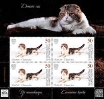 H01 Kyrgyzstan 2019 Mi# 125 Cats Katzen Mini Sheet MNH Postfrisch - Kirgisistan