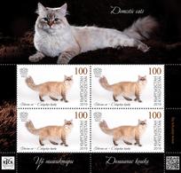 H01 Kyrgyzstan 2019 Mi# 126 Cats Katzen Mini Sheet MNH Postfrisch - Kirgisistan