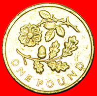 # OAK AND ROSE: GREAT BRITAIN ★ 1 POUND 2013 ENGLAND! LOW START ★ NO RESERVE! - 1 Pound