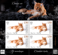 H01 Kyrgyzstan 2019 Mi# 127 Cats Katzen Mini Sheet MNH Postfrisch - Kirgisistan