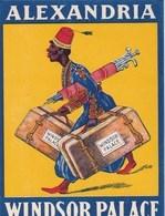 Etiquette De Bagage  Label Valise  Hotel Alexandria Windsor Palace    (Egypte) Très Bon état Belle Illustration - Publicités