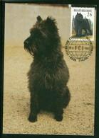 Belgium 1986 Dog Chien Maximum Card 1V - Cani