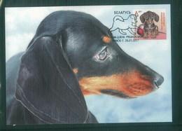 Belarus 2017 Dog Chien Maximum Card 1V - Cani