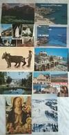 10 CART. ITALIA    (513) - Cartoline