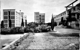 34 MONTPELLIER - La Cité Universitaire - Montpellier