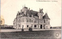 18 MENETOU SALON - Le Château - Autres Communes