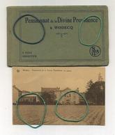 WODECQ : 9 CPA Carnet Complet : Pensionnat De La Divine Providence  ( Edit : Lagneau Flobecq ) - Ellezelles