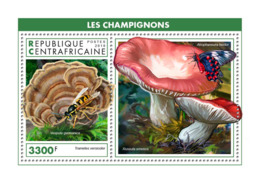 Central Africa 2018  Mushrooms S201902 - Central African Republic