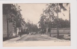 Hoboken - Louizalei Gelopen 1908 Veel Animatie Uitg.vertongen - Antwerpen