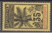 COTE D'IVOIRE                N° YVERT  :    29     NEUF SANS GOMME        ( SG     1/20  ) - Côte-d'Ivoire (1892-1944)