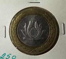 Iran 250 Rials 1994 Varnished - Iran