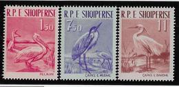 Albanie N°552/554 - Oiseaux - Neuf * Avec Charnière - TB - Albania