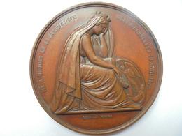 BRUXELLES-CHARLES DE BROUCKERE(1796-1860)- 132 GRAMMES-70 Mm - Professionnels / De Société