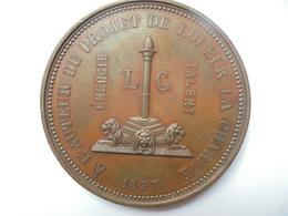 LIEGE-1857-ALPHONSE NOTHOMB-PROJET DE LOI CHARITE Par WIENER- 143 GRAMMES-65 Mm - Professionnels / De Société