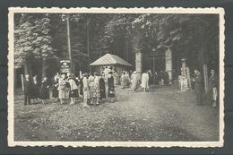 Vintage C.P. Jardin Zoologique De Spa. Chateau La Havette. L'Entrée - Spa