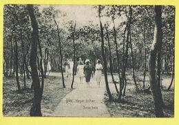 * Heist Aan Zee - Heyst (Kust - Littoral) * (Héliotypie De Graeve - Star, Nr 1165) Sous Bois, Parc, Animée, Rare, Old - Heist