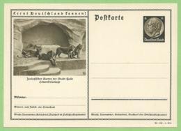 Entier - Hindenburg - 1939 - Apprenez à Connaitre L' Allemagne - Lion Dans Le Zoo De La Ville De Halle - Félins